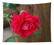 Scarlet... Tapestry