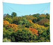 Scenic Minnesota 5 Tapestry