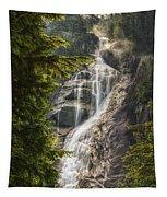Scenic Of Shannon Fallsbritish Columbia Tapestry
