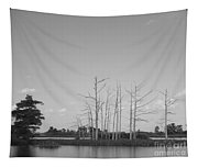 Scenic Swamp Cypress Trees Black And White Tapestry
