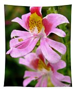 Schizanthus Named Angel Wings Tapestry