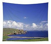 Scotland Shetland Islands Eshaness Cliffs Tapestry