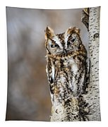 Screech Owl Checking You Out Tapestry