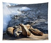 Sea Lions Seek Shelter Tapestry