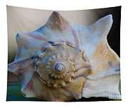 Sea Shell Tapestry