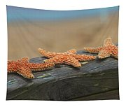 Sea Star Trio Tapestry
