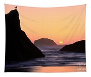 Seagull And Sunset Tapestry