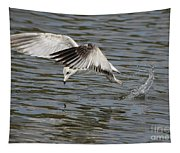 Seagull Dive Tapestry