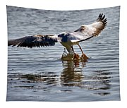 Seagull Tapestry