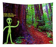 Searching For Friends Among The Redwoods Tapestry