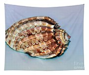 Seashell Wall Art 9 - Harpa Ventricosa Tapestry