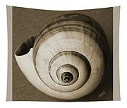 Seashells Spectacular No 25 Tapestry