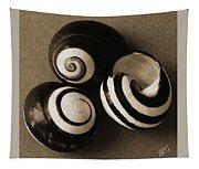 Seashells Spectacular No 27 Tapestry