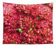 Sedums Upclose Filtered Tapestry