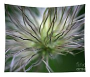 Seed Head Tapestry