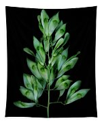Seed Tree Tapestry