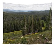 Seeing Forever - Yellowstone Tapestry