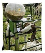 Self Serve Goat Tapestry