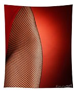 Sexy Woman Hips In Fishnet  Tapestry