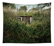 Shack In The Park Tapestry