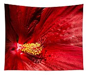 Shades Of Red Tapestry
