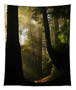 Shadow Dreams Tapestry
