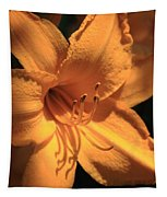 Day Lily Shadows Tapestry
