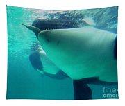 Shamu Was  1965-1971 Orca Sea World California 1968 Tapestry