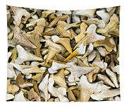 Sharks Teeth Tapestry