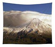 Shasta Storm Tapestry