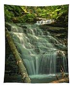 Shawnee Falls Tapestry