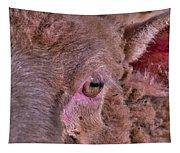Sheep Close Up 2 Tapestry
