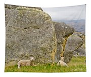 Sheep On A Mountain Pasture Between Granite Rocks Tapestry