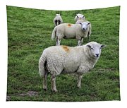 Sheep On Parade Tapestry
