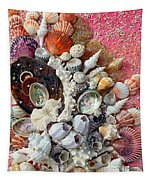 Shell Creation  13 Tapestry