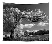 Shepton Tree Tapestry