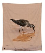 Shore Bird At Whitewater Draw Tapestry