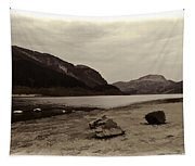 Shore Of A Loch In The Scottish Highlands Tapestry
