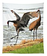 Showoff Tapestry