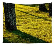Shyness Tapestry
