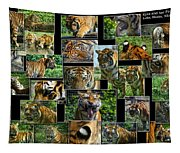 Siberian Tiger Collage Tapestry