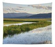 Sierra Valley Wetlands Tapestry