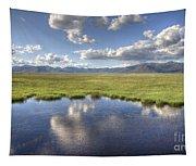 Sierra Valley Wetlands II Tapestry