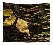 Signs Of Autumn Tapestry