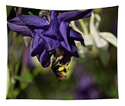 Silky Blue Columbine And A Busy Bee Tapestry
