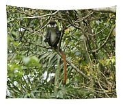Silly Red-tailed Monkey Tapestry