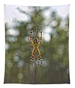 Silver Argiope Tapestry
