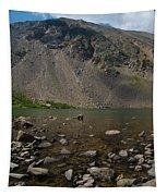 Silver Dollar Lake Colorado Tapestry