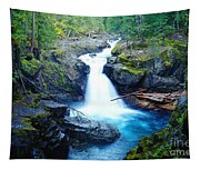 Silver Falls  Tapestry