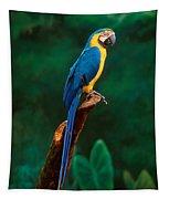 Singapore Macaw At Jurong Bird Park  Tapestry